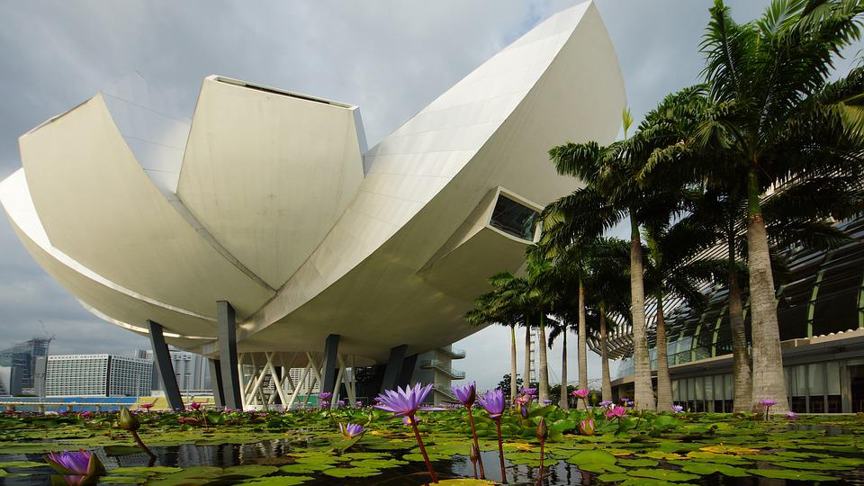 Singapore, Lotus Flower, Pond, Landmark