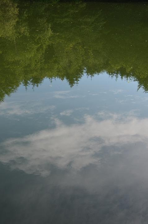 Mirroring, Lake, Pond, Reflection, Water, Water Surface