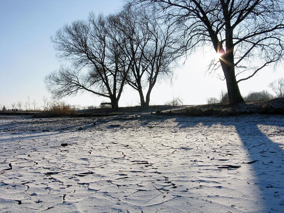 Winter, Sun, Pond, Ice, Frost, Light, Nature, Trees