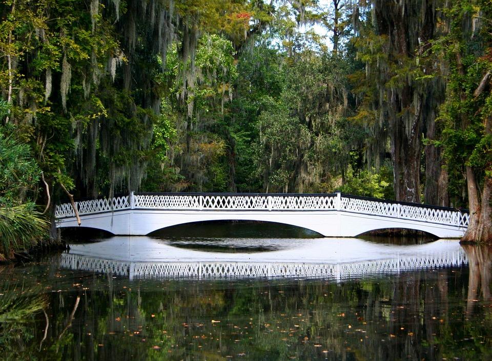 White Bridge, Swamp, Spanish Moss, Pond, Footbridge