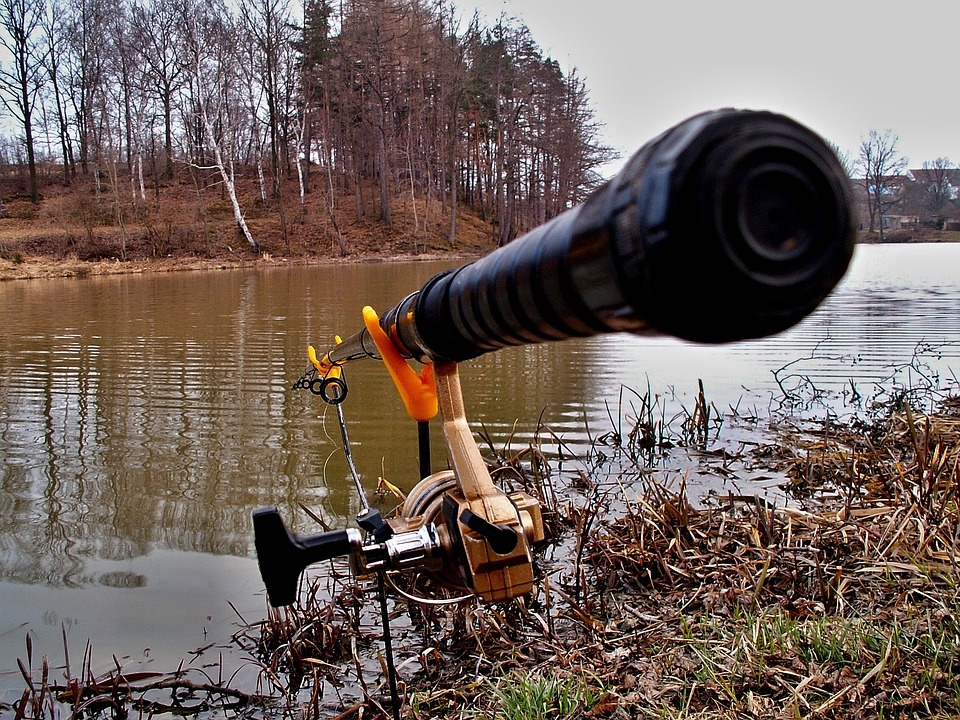 Fishing Rod, Pond, Fishing Rods Forks, Fishing, Water
