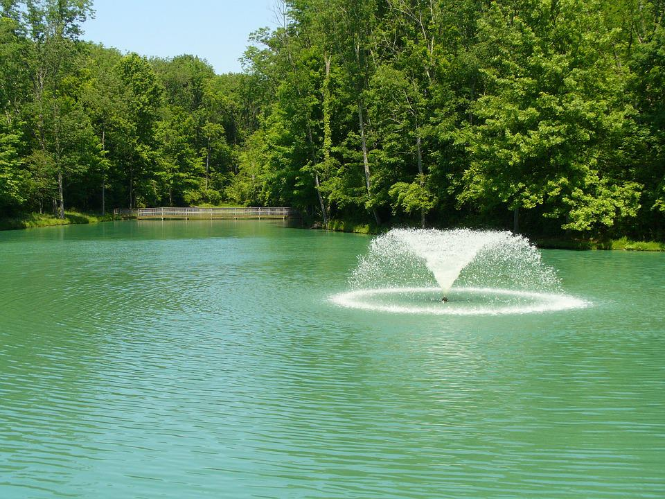 Pond, Fountain, Water, Nature, Park, Outdoor, Landscape