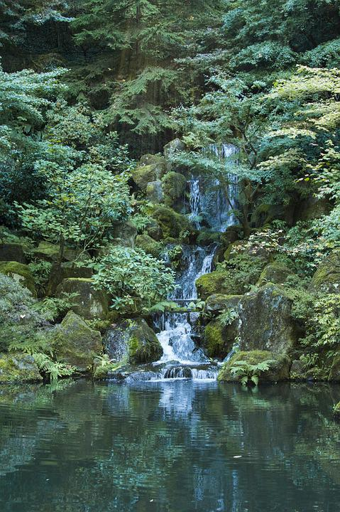 Waterfall, Garden, Pond, Water, Plants, Rocks, Japanese