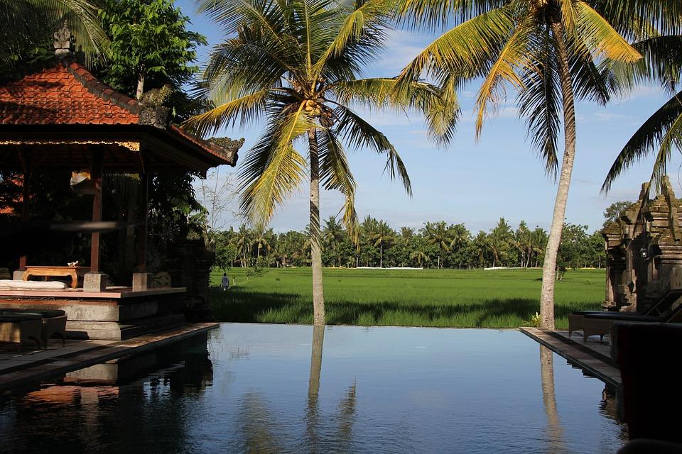 Bali, Indonesia, Pool, Palms, Resort, Vacations