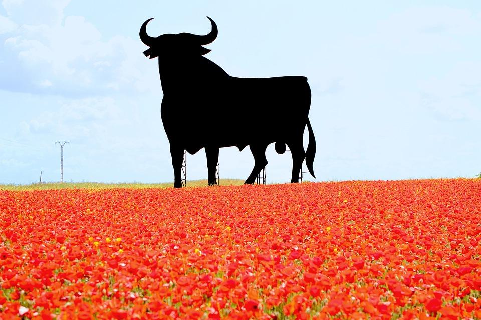 España La Bella, Spain, Bull, Poppies, Billboard