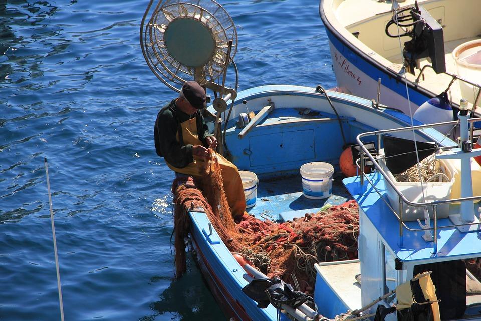 Fischer, Sea, Boot, Fish, Port, Blue, Network, Ship