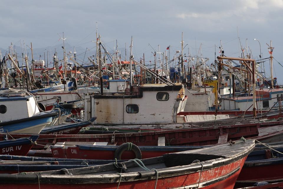Puerto Natales, Boats, Fishermen, Port, Fisherman