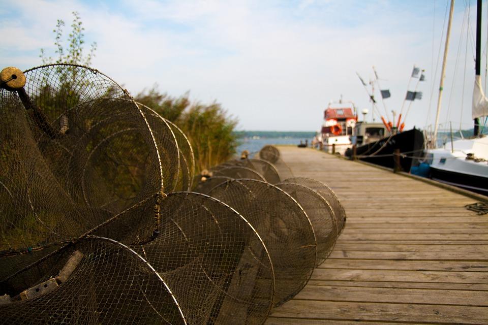 Web, Sea, Port, Reuse, Boats, Boardwalk, Baltic Sea
