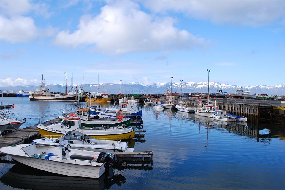 Iceland, Port, Ship, Húsavík