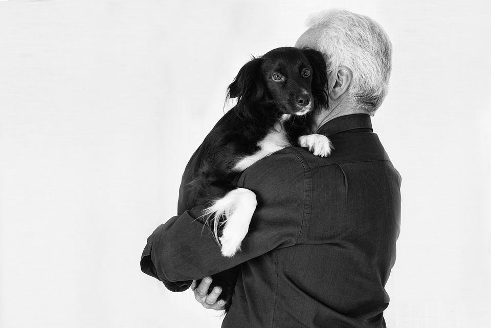 Pet, Animals, Dog, Friend, Black, Man, Love, Portrait
