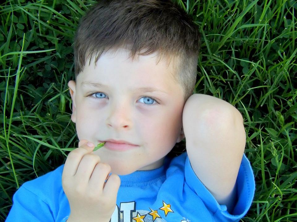Boy, Portrait, Blue, Grass