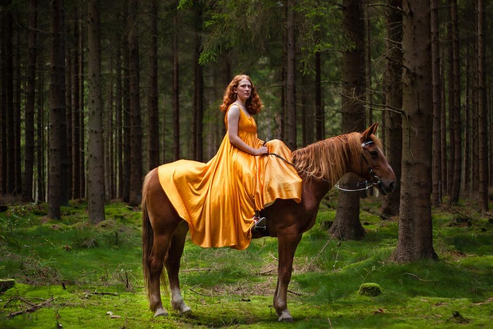 Natural, Mammals, Portrait, Horse, Redhead