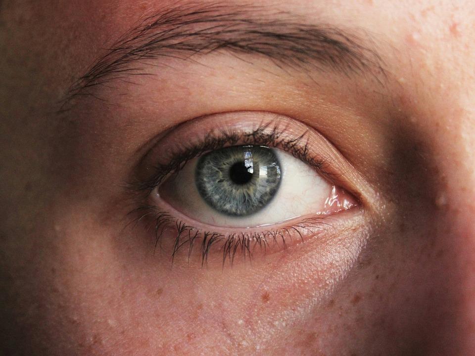 Eye, Eyes, Skin, Face, Girl, Eyebrows, Portrait, Nose