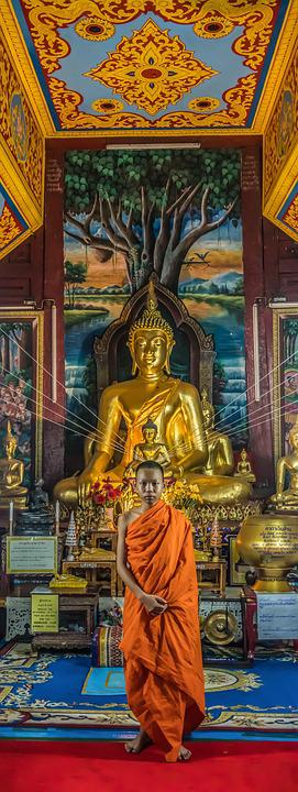 Monk, Young, Buddhism, Culture, Portrait, Tradition