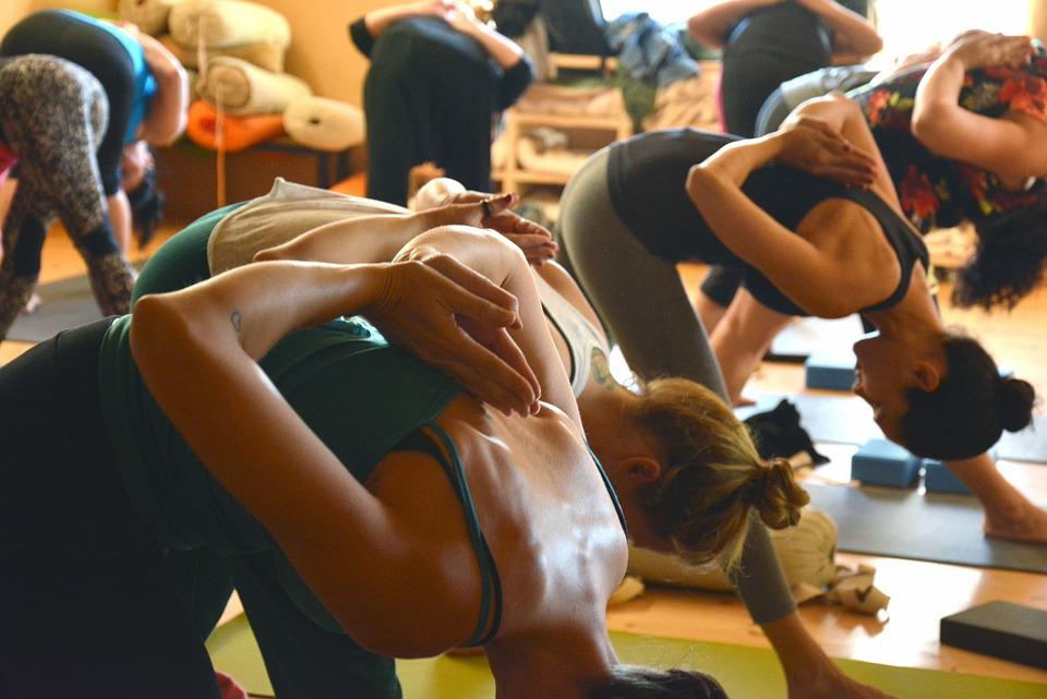 Yoga, Group, Fitness, Exercise, Female, Pose, Workout