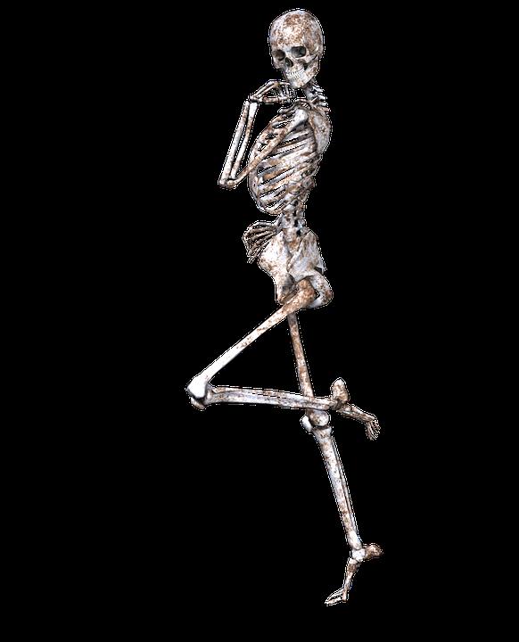 Free photo Pose Png Bones Skeleton Skull 3d - Max Pixel