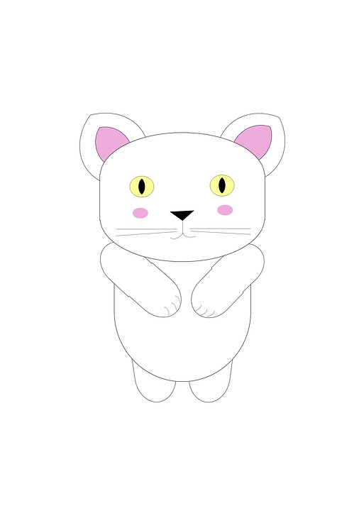 Poster, Sheet, Decoration, Drawings, Design, White Cat