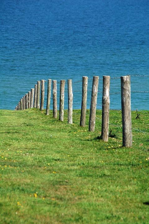 Posts, Grass, Green, Sea, Water