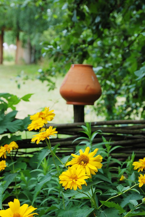 Fence, Pot, Flower, Yellow, Brown, Wall, Yard, Woods