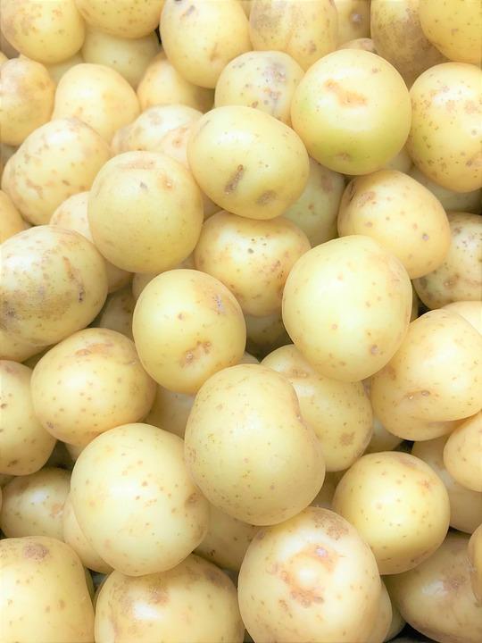 Potato, Farm, Mash, Roast, Chip, Boiled, Jersey, Dinner