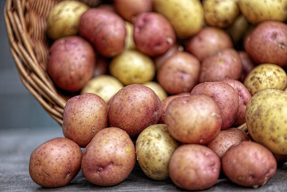 Potatoes, Vegetables, Food, Nature, Fresh, Brown Nature