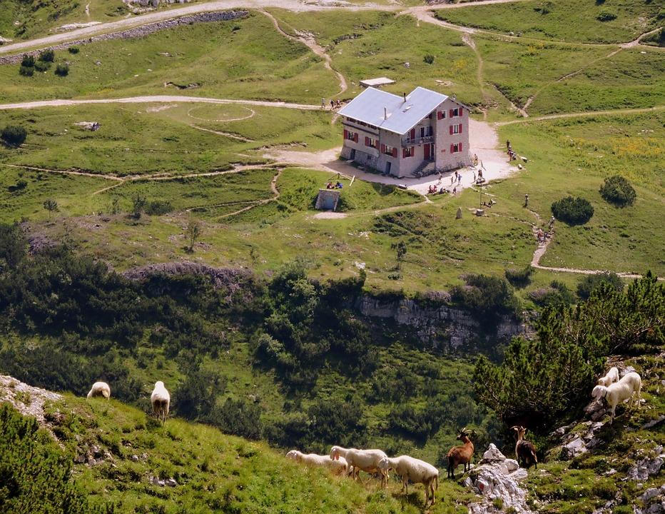 Refuge, Scalorbi, Mountain, Hiking, Prato, Sheep, Capra