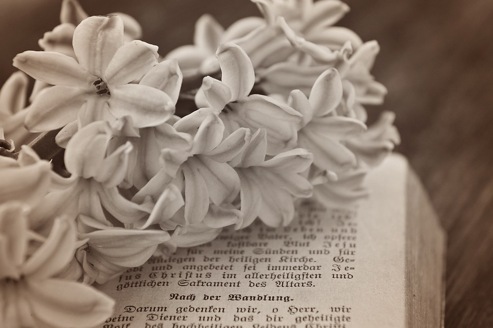 Flower, Hyacinth, Flowers, Book, Prayer Book, Old