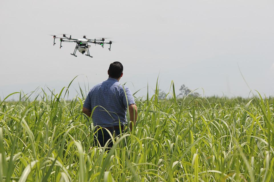Drone, Precision Agriculture, Crops, Spray, Fumigation