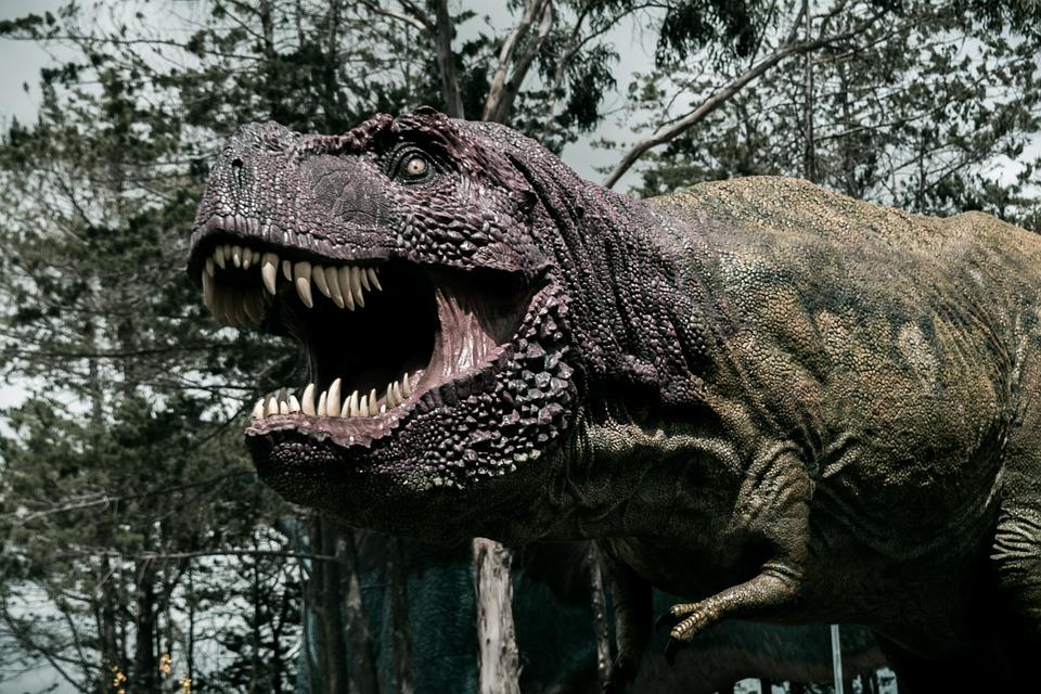 Dinosaur, Cretaceous, Paleontology, Prehistoric, Giant
