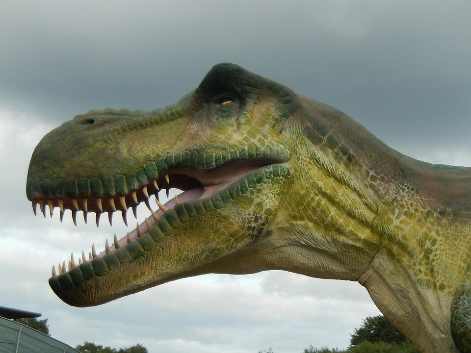 Prehistory, Dinosaur, Caves