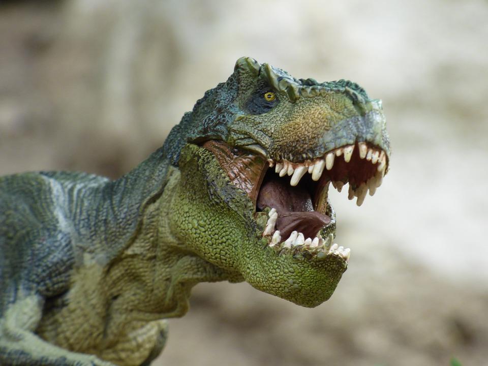 Tyrannosaurus, Dinosaur, Prehistory, Toy, Game