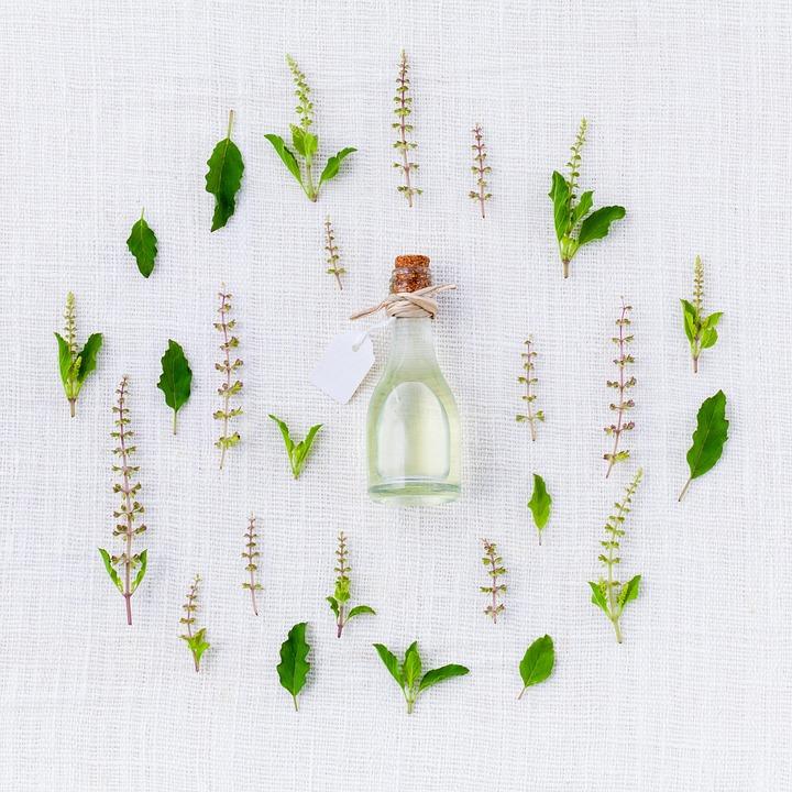 Aroma, Basil, Preparation, Natural, Spice, Kitchen