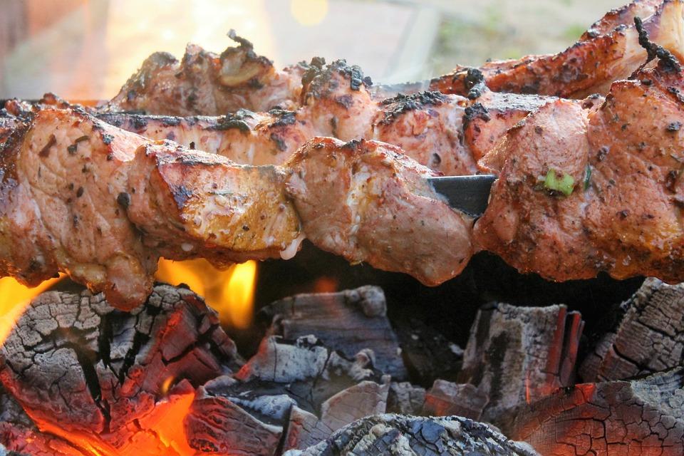 Shish Kebab, Fire, Coals, Picnic, Burns, Preparing