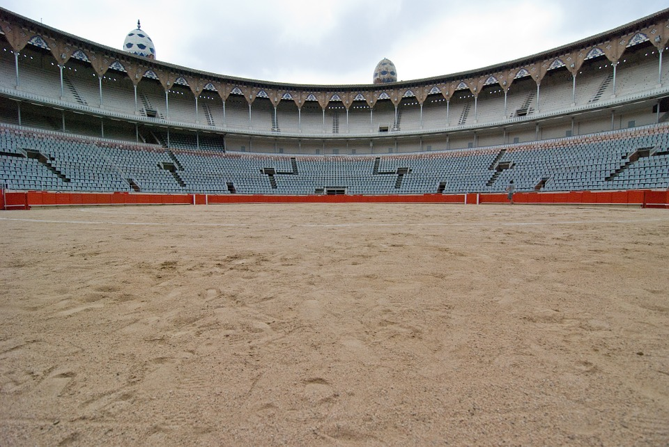 Bullfight, Arena, Spanish, Pride, Bullfighting