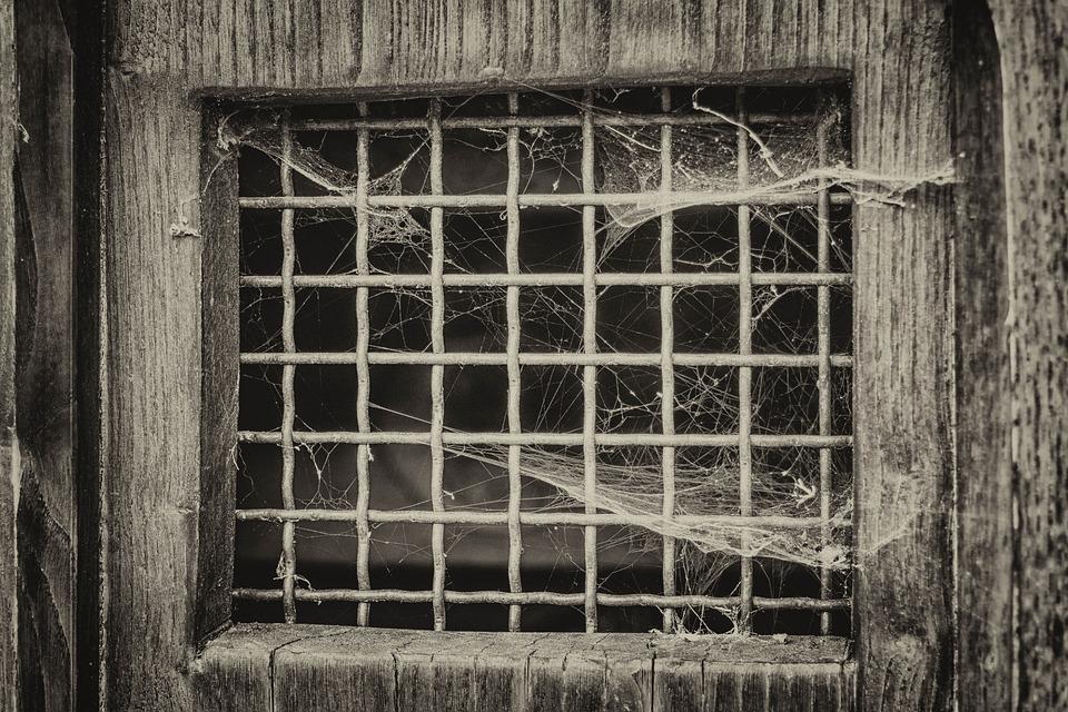 Window, Grid, Door, Spider Web, Atmosphere, Old, Prison