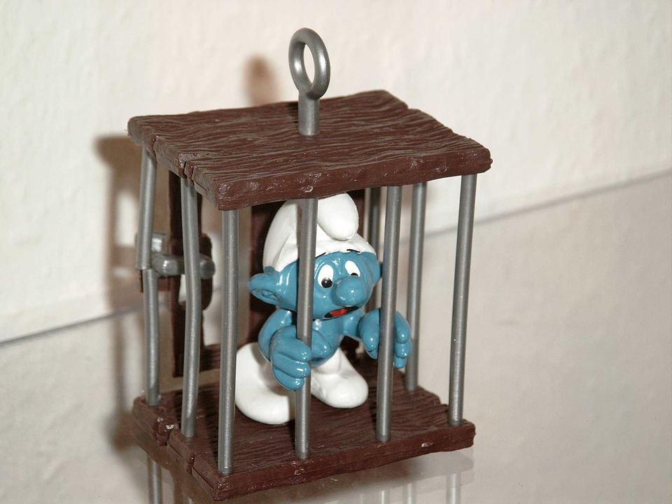Smurf, Caught, Prison, Included