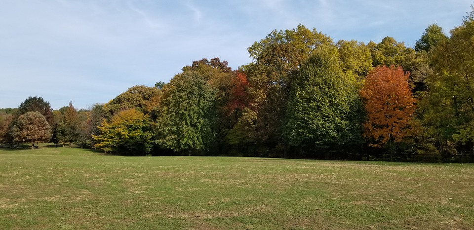 Prospect Park, Brooklyn, Fall, Autumn, Nyc, Colorful