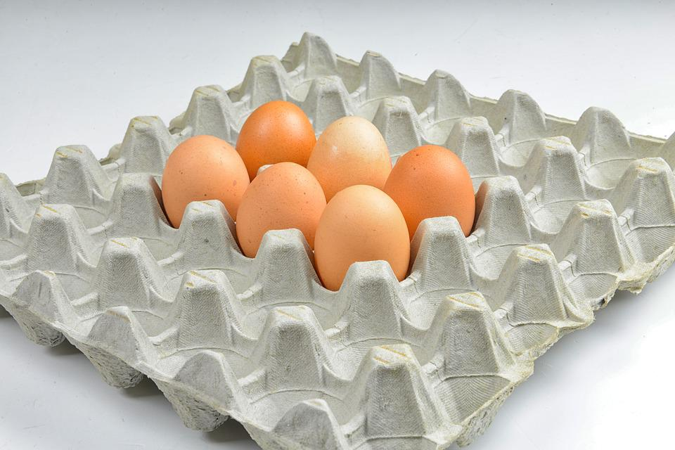 Egg, Hen's Egg, Easter, Protein, Egg Packaging