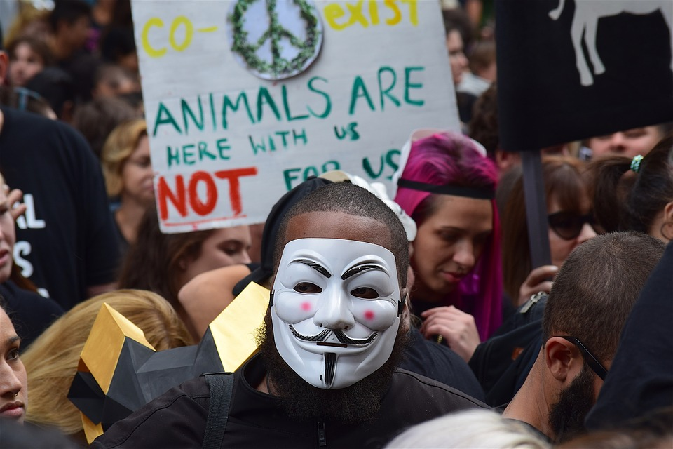 Rally, March, Sign, Protester, Mask, Animal Rights