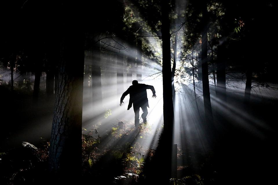 Eery, Fear, Stalk, Frankenstein, Forest, Psychopath