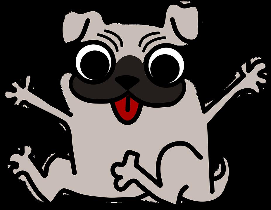 Dog, Ideas, Pug
