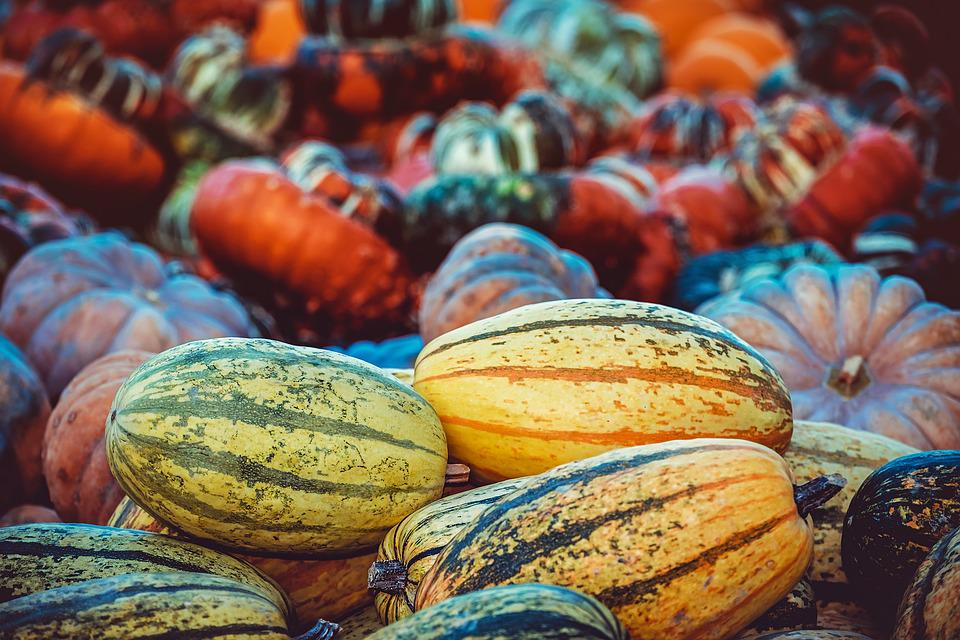 Pumpkin, Autumn, Autumn Decoration, Autumn Fruits