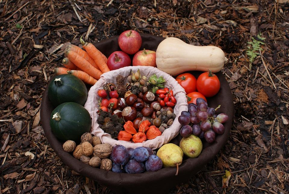 Autumn, Basket, Harvest, Pumpkin, Carrots, Grapes