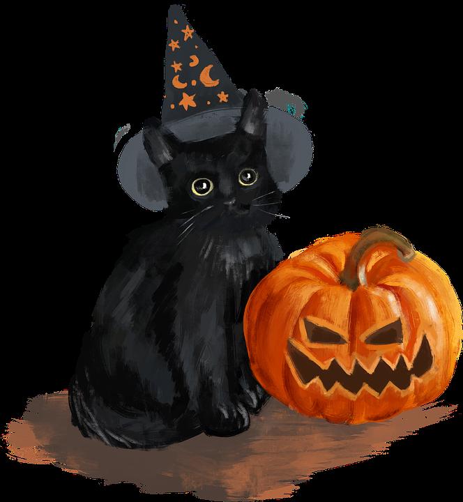 Halloween, Black Cat, Pumpkin, Drawing, Cartoon, Cutout