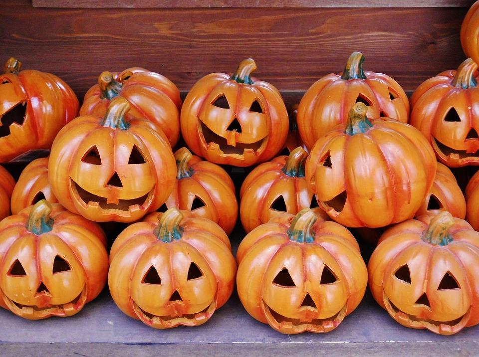 Pumpkin Heads, Halloween, Golden Autumn, Funny
