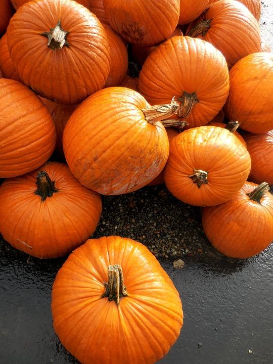 Pumpkins, Orange, Pumpkin, Fall, October, Harvest