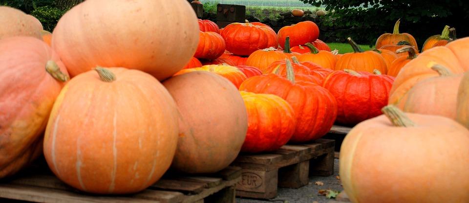 Pumpkin, Pumpkins, Helloween, Vegetables