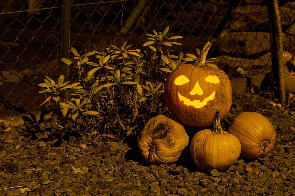 Pumpkin, Food, Autumn, Fruit, Halloween, Vegetables
