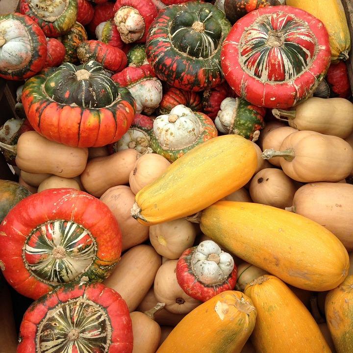 Pumpkins, Autumn, Orchard, Orange, November, October