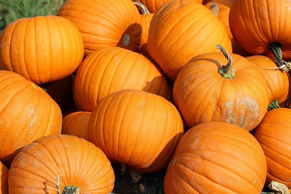 Pumpkins, Yellow, Vegetables, Food, Cucurbita